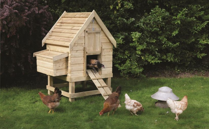 Dream Meaning of Coop (Poultry House)