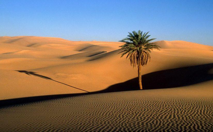 Dream Meaning of Desert