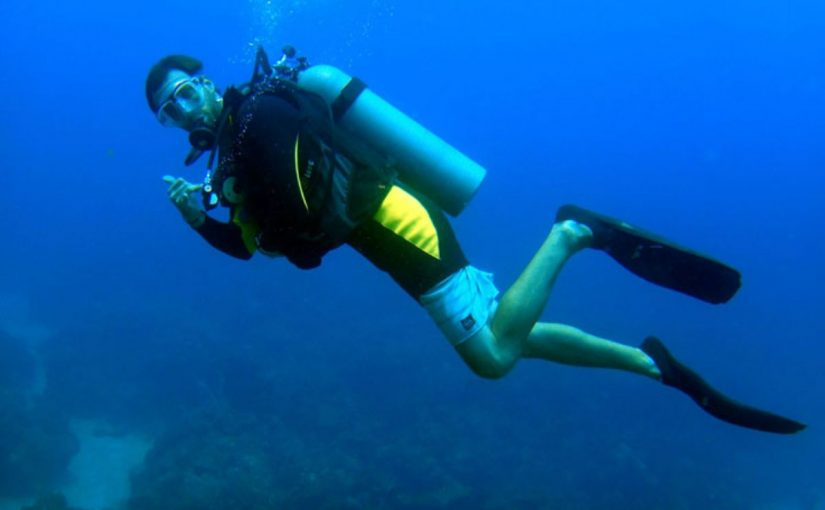 Dream Meaning of Diver