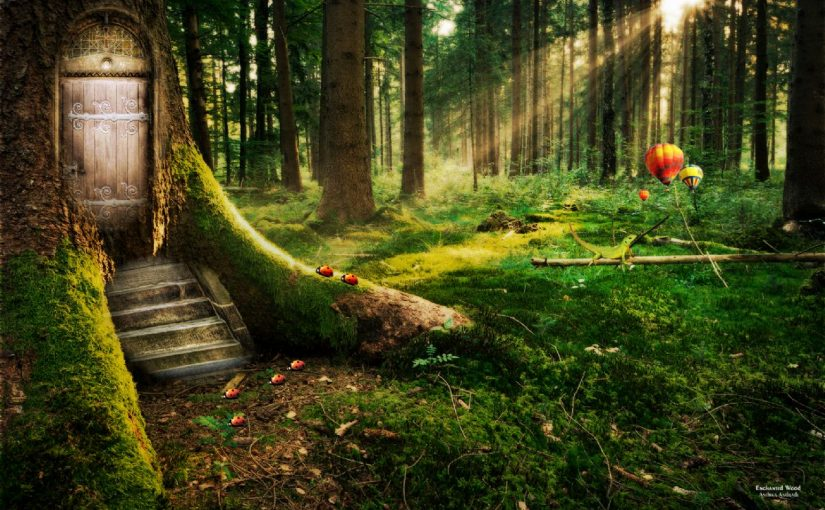 Dream Meaning of Forest