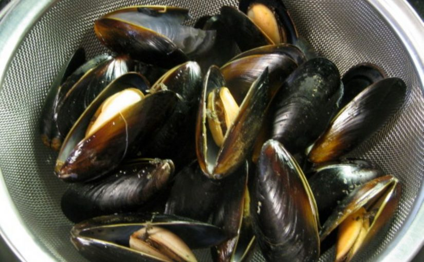 Dream Meaning of Mussel