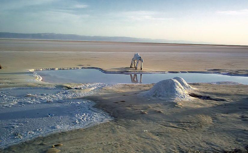 Dream Meaning of Salt